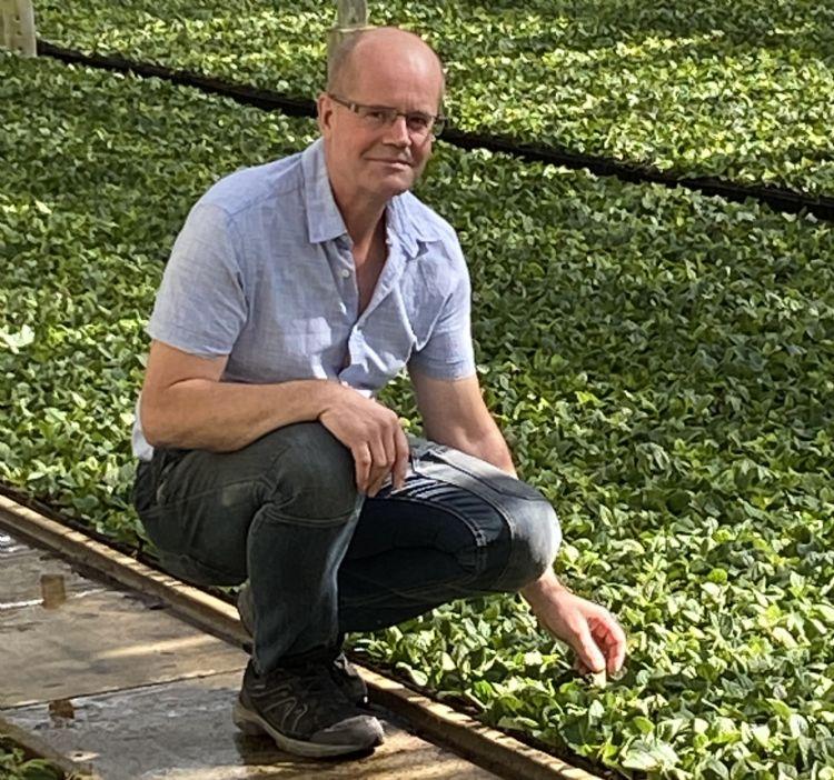 André Boereboom, eigenaar van Boereboom Stekcultures