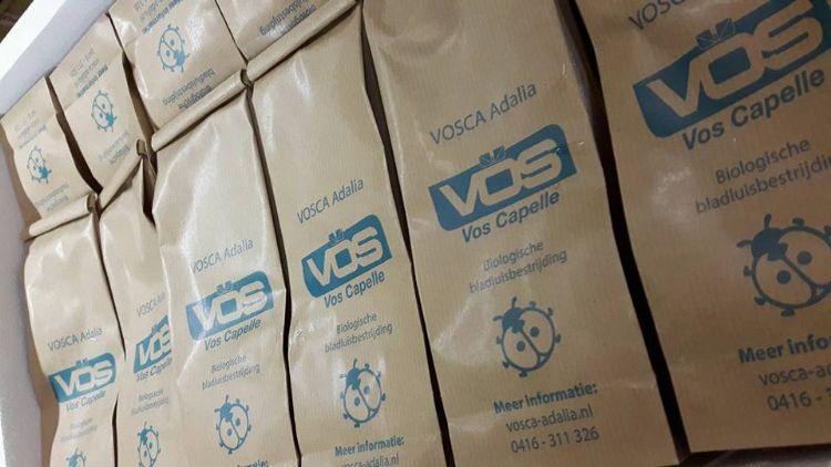De zakjes VOSCA Adalia die Vos Capelle uitlevert aan gemeenten, hoveniers en groenbedrijven